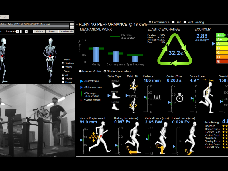 Markerless 3D Gait Analysis